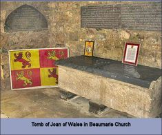 Joan, Lady of Wales, daughter of King John Plantagenet of England Uk History, My Family History, Wales Uk, North Wales, Royal Family Trees, King John, Plantagenet, Queen Of England, My Ancestors