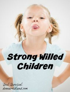 """""""Difficult People & Strong Willed Children"""" (2.3) How do you handle difficult people? Do you respond with sinful anger and frustration or do you respond as Moses did? What about parenting difficult or strong willed children?"""