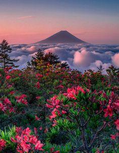 ***Sky garden by Jormungand (Japan)