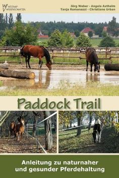 Paddock Paradise: A Guide to Natural Horse Boarding: Amazon.de ...