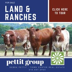 Farms, homes, ranches & land. Your front porch is waiting  Debra Pettit Group 214.437.6965 Town Center Real Estate pettit-group.com  Follow us on Facebook @ Debra Pettit Group