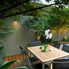 White orchids decorate a stylish dining table in a contemporary courtyard garden with tropical planting