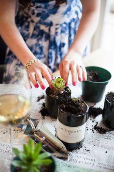 DIY Gift Idea: Wine Bottle Succulent Planters — Freckled Italian