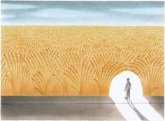 Our wheat phobia distracts us from the real problem.