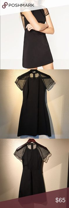 Zara sexy blk dress-Trafaluc Collection Never worn, new without tags. Size small, sheer back and front sleeves, sheer fabric has small black dot details, delicate lace detail on the neck, zipper back. Zara Dresses