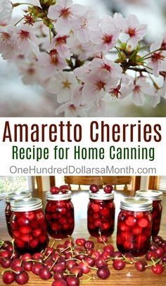 Canning 101 - Amaretto Cherries - One Hundred Dollars a Month Cherry Recipes, Jam Recipes, Fruit Recipes, Other Recipes, Cherry Desserts, Nutella Recipes, Jelly Recipes, Dessert Recipes, Desert Recipes