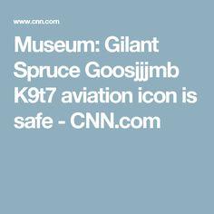 Museum: Gilant Spruce Goosjjjmb K9t7 aviation icon is safe - CNN.com