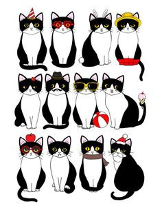 Twelve Tuxedo Cats 8.5 x 11 Art Print.  via Etsy.