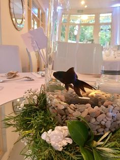Fish bowl centre pieces for the wedding table