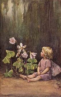 Cicely Mary Barker | The Wood-Sorrel Fairy