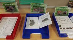 Sonniges Klassenzimmer: Schilder für Lapbookstationen