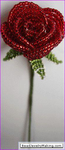 roos van pareltjes