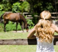 Well behaved or naughty, your horse will need structured time with you