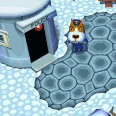 """Hoarded too many things from Lost and Found. 