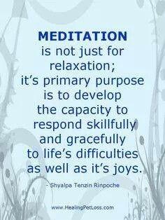 Meditação não é apenas para relaxar; o  objetivo principal é desenvolver a capacidade de responder com habilidade e graça às dificuldades da  vida tão bem quanto ás alegrias