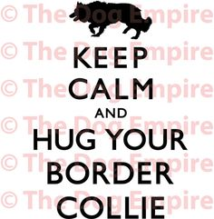 Keep Calm And Hug Your Border Collie.or your border collie - jack russel terrier! All Dogs, I Love Dogs, Puppy Love, Best Dogs, Dogs And Puppies, Cute Dogs, Doggies, Rottweiler, Keep Calm And Love