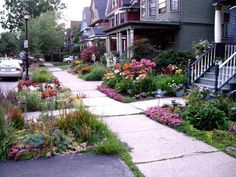 Sidewalk Garden Ideas