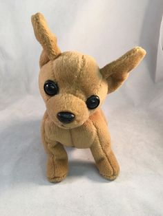 6db3a8c8acd Check out Ty Beanie Babies 1999 Tiny The Chihuahua Dog Collectible Toy  https