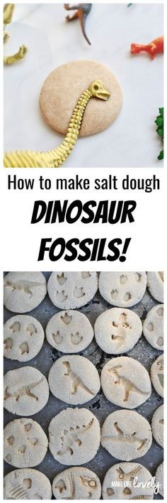 How to make DIY dinosaur fossils from salt dough. Great dino dig activity for a dinosaur party or just for fun! How to make DIY dinosaur fossils from salt dough. Great dino dig activity for a dinosaur party or just for fun! Dinosaur Activities, Dinosaur Crafts, Dinosaur Fossils, Activities For Kids, Crafts For Kids, Dinosaur Toys, Quick Crafts, Kids Dinosaurs, Spanish Activities
