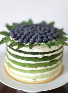 Blueberry mint, rainbow-cake, we can't wait to make this for out Summer dinner p. Food Cakes, Cupcake Cakes, Candy Cakes, Pretty Cakes, Beautiful Cakes, Amazing Cakes, Just Desserts, Dessert Recipes, Cake Recipes