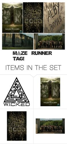 """Maze runner tag"" by a-nobody-has ❤ liked on Polyvore featuring art"