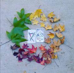 the wild unknown tarot tarot mandala image via @water_whispers leaves, autumn, rainbow, mandala, tarot cards, three of wands, three of pentacles