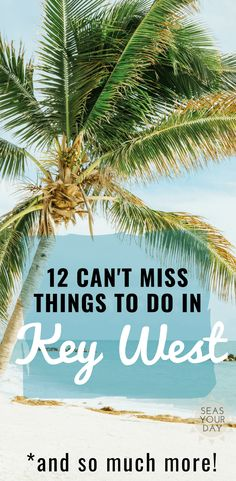 A comprehensive vacation travel guide of attractions and activities to do in Key West, Florida. Top 12 must do things for first time visitors plus information on beaches, water sports, fishing… Florida Travel Guide, Florida Vacation, Vacation Trips, Vacation Travel, Vacation Packages, Vacation Spots, Key West Florida, Florida Keys, Florida Beaches