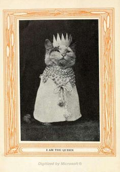 Kittens and Cats; A Book of Tales (1911), above, by Eulalie Osgood Grover, may have been the lolcats of its time.