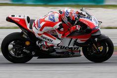27 Casey Stoner, Ducati Team - MotoGP, Sepang Test 2016