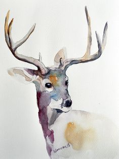 Deer original watercolor painting  Christmas by AlisaAdamsoneArt