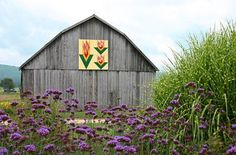 Tennessee Tulip quilt pattern painted on a barn in Shady Valley, Tennessee, USA.