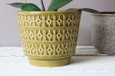 Jasba Übertopf aus Keramik senf Vintage 60er 70er / West German Pottery flowerpot Decoration, Flower Pots, Planter Pots, Vintage, Home Decor, Mustard, Decor, Flower Vases, Plant Pots