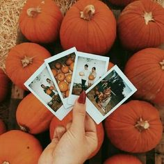 instagram: @anikahirai ✰ vsco: @anikahirai #autumnphotography instagram: @anikahirai ✰ vsco: @anikahirai Samhain, Icon Background, Fall Photos, Cute Fall Pictures, Happy Pictures, Winter Pictures, Profile Pictures, Friend Pictures, Beach Pictures