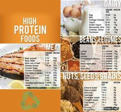 High Protein Foods - Healthy Food for Fitness