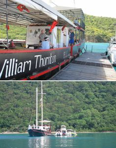 Willy T Set to Make BVI Comeback - The Howorths | The Howorths