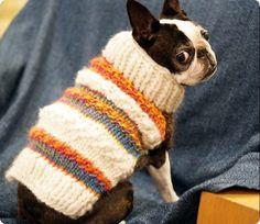 Cappottino per cani ai ferri (Foto)   NanoPress Donna