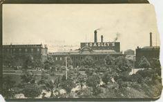 Southbank factories, 1900