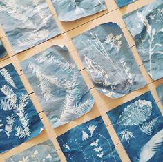 Dana Tanamachi sun prints