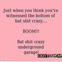 Oh I'm bat shit crazy. Just when you think you've seen my craziest peak. Just For Laughs, Just For You, Haha Funny, Hilarious, Funny Stuff, Funny Shit, Funny Things, Funny Thoughts, I Love To Laugh