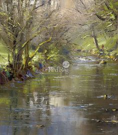 Rex PRESTON - Reflections in the River Wye, Chee Dale