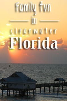 There is so much for families to do in Clearwater, Florida. Make the oasis your next vacation destination!