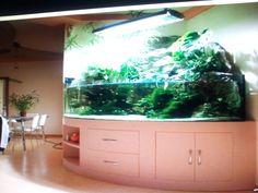 Design Aquarium 1