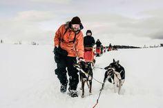 Hundekjører Stefan Dahlquist Alta Norway, Outdoor Activities, Arctic, Alaska, Camel, Animals, Dog, Travel, Animais