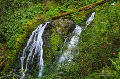 Delicate Waterfall - Cataract Falls Trail  by Darvin Atkeson, via 500px