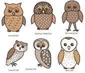 Owl Craft Type of Owl Printable Actiivity Sheet