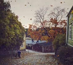 milamai:  Windy Autumn Day on Flickr.