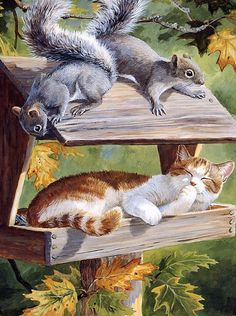 by Persis Clayton Weirs.reminds me of a picture my Mom took of her cat, Minnie sitting in her bird feeder that was made almost just like the one in this illustration, minus the squirrels & Minnie was a black & gray tabby! I Love Cats, Crazy Cats, Cute Cats, Animals And Pets, Cute Animals, Image Chat, Gatos Cats, Here Kitty Kitty, Cat Drawing
