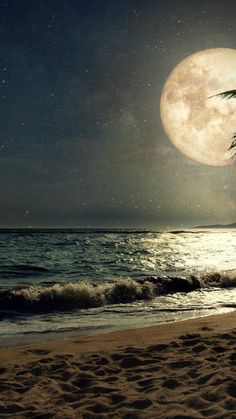 Beach at Night iPhone Wallpapers - Top Free Beach at Night iPhone Backgrounds - WallpaperAccess Night Sky Wallpaper, Sunset Wallpaper, Galaxy Wallpaper, Beautiful Nature Wallpaper, Beautiful Moon, Beautiful Landscapes, Moon Pictures, Nature Pictures, Moon Beach