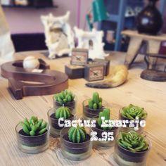 Cactus kaars 3,95 #ITEMZ