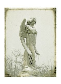 Ice drips from this stunning angel after a winter storm. Film photograph with a slight vintage style background.    Title: Angel Ice  Size: 8 inches by 10 inches/Slight Vintage Borders    (via dooce)